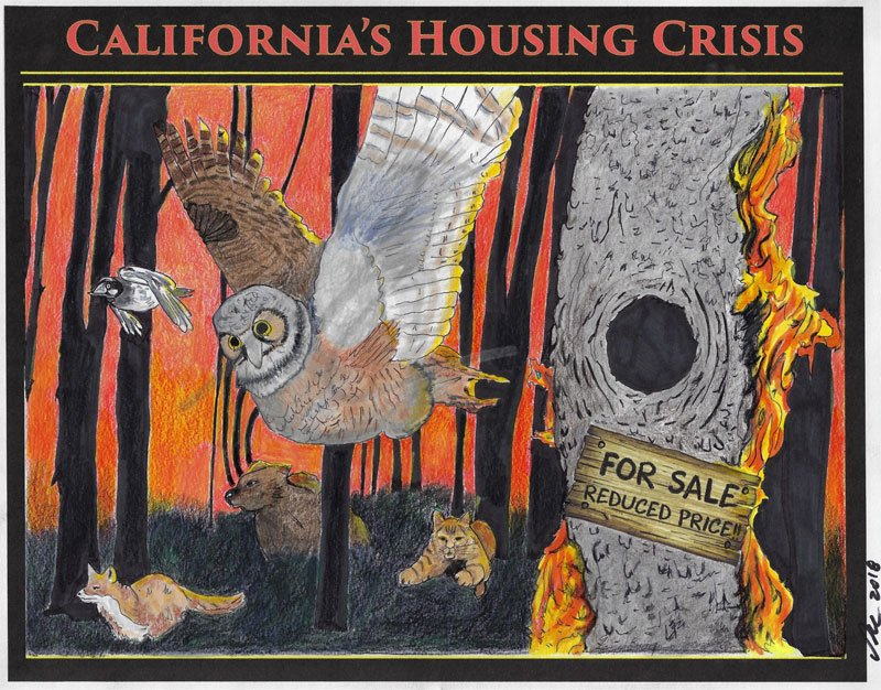 California's Housing Crisis