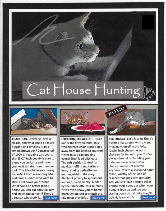 Cat House Hunting