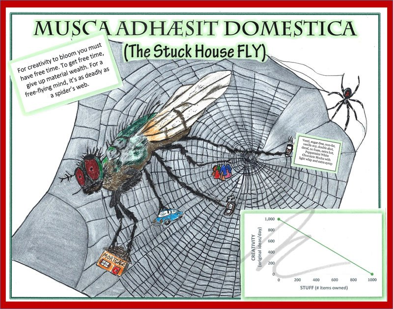 The Stuck House Fly