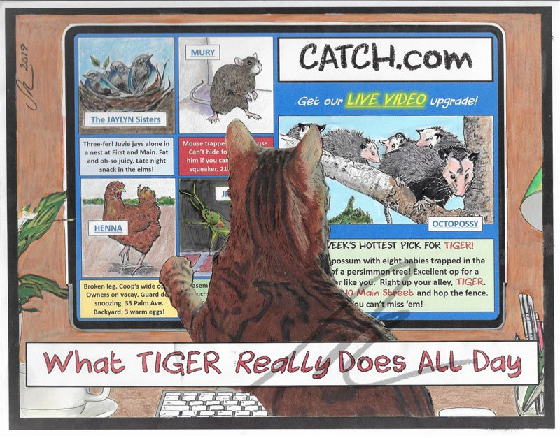 What Tiger Really Does All Day